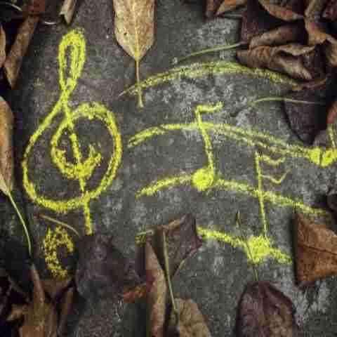 آهنگ چه شد از محسن چاوشی