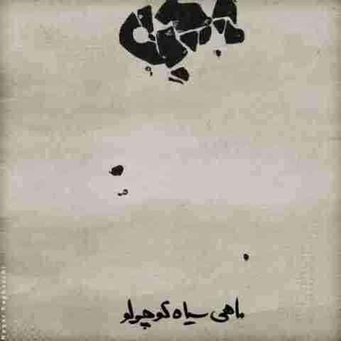 محسن چاوشی شیدایی