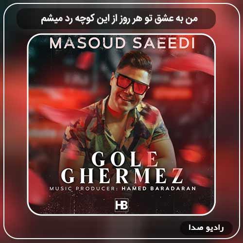 دانلود اهنگ جدید مسعود سعیدی به نام من به عشق تو هر روز از این کوچه رد میشم